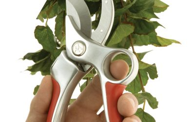 Ames True Temper: Pruning Tools